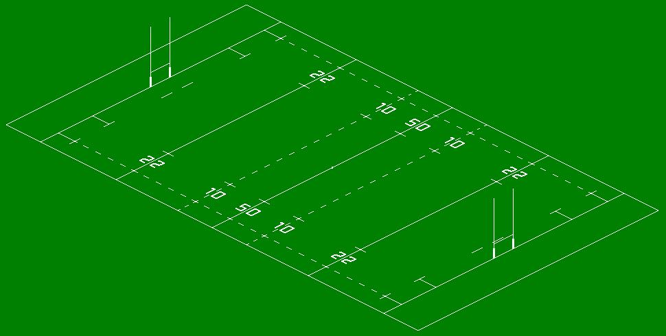 Игровое поле регби
